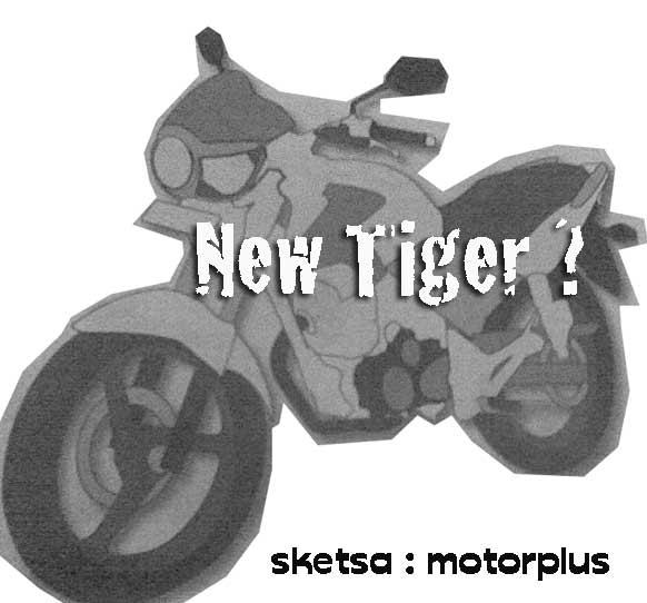 Sketsa New Tiger