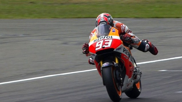 Frog Swimming Style Marquez